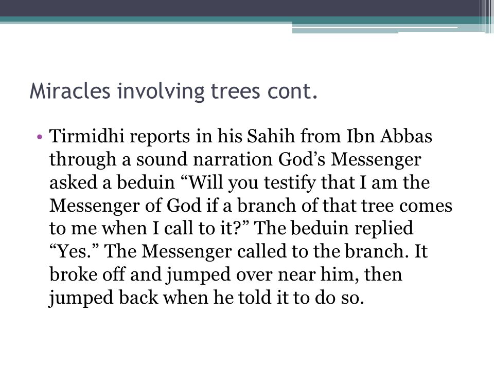 Miracles involving trees cont.