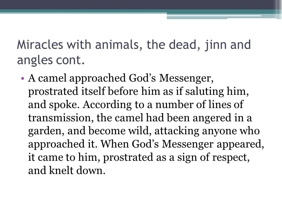 Miracles with animals, the dead, jinn and angles cont.