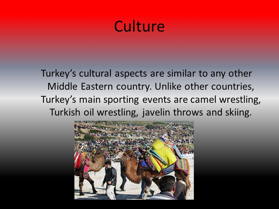 Culture Turkey's cultural aspects are similar to any other Middle Eastern country.