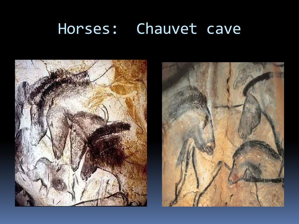 Cave Bear and Leopard Chauvet Cave