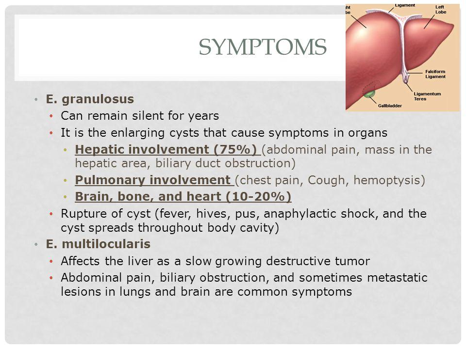 SYMPTOMS E.