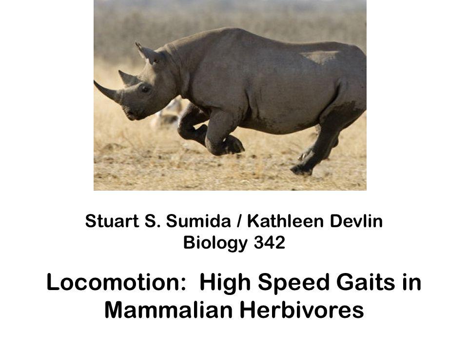 Stuart S. Sumida / Kathleen Devlin Biology 342 Locomotion: High Speed Gaits in Mammalian Herbivores