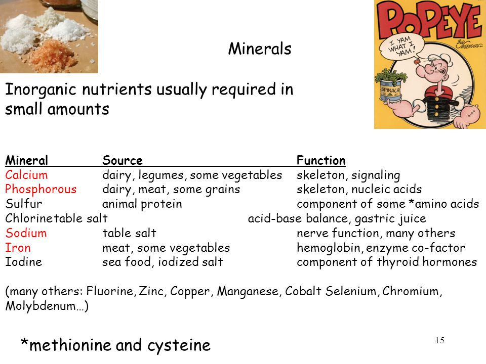 Minerals Inorganic nutrients usually required in small amounts MineralSourceFunction Calciumdairy, legumes, some vegetablesskeleton, signaling Phosphorousdairy, meat, some grainsskeleton, nucleic acids Sulfuranimal proteincomponent of some *amino acids Chlorinetable saltacid-base balance, gastric juice Sodiumtable saltnerve function, many others Ironmeat, some vegetableshemoglobin, enzyme co-factor Iodinesea food, iodized saltcomponent of thyroid hormones (many others: Fluorine, Zinc, Copper, Manganese, Cobalt Selenium, Chromium, Molybdenum…) *methionine and cysteine 15
