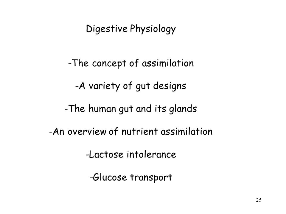 25 Digestive Physiology -The concept of assimilation -A variety of gut designs -The human gut and its glands -An overview of nutrient assimilation -Lactose intolerance -Glucose transport