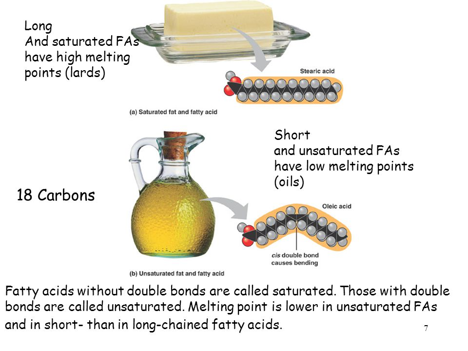 Fatty acids without double bonds are called saturated.
