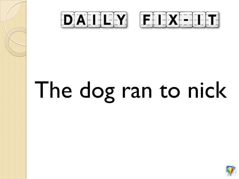 The dog ran to nick