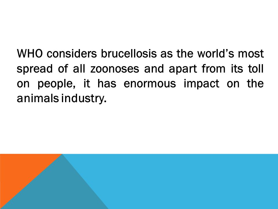 WHO considers brucellosis as the world's most spread of all zoonoses and apart from its toll on people, it has enormous impact on the animals industry.
