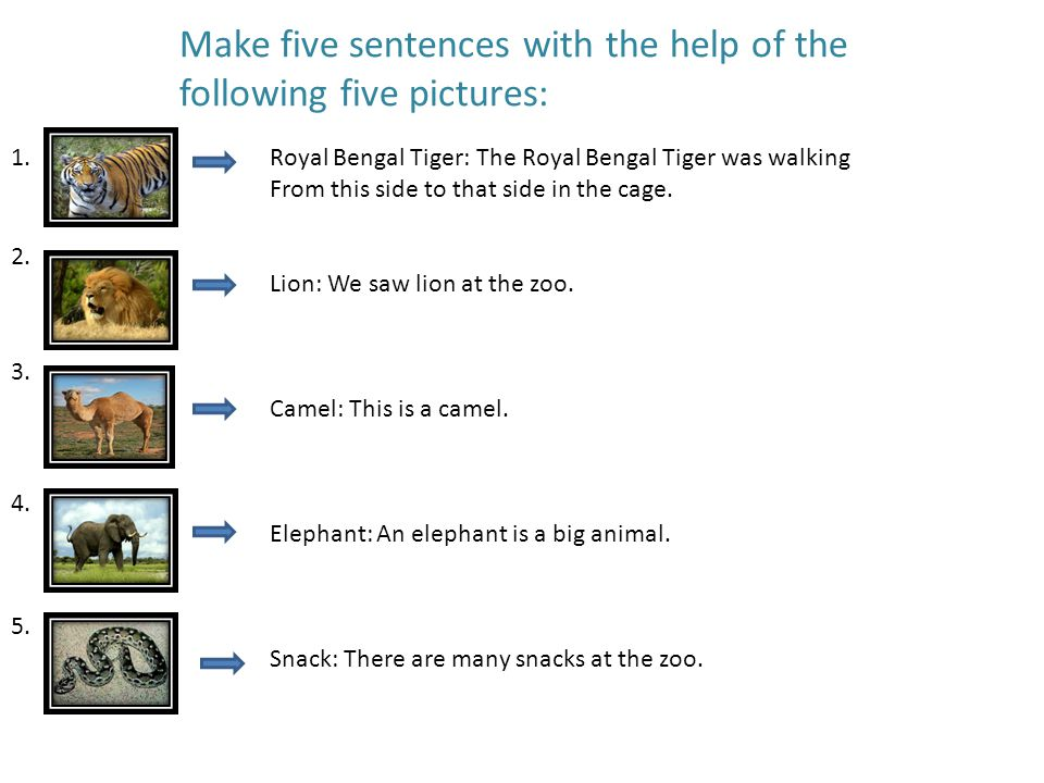 Make five sentences with the help of the following five pictures: 1.