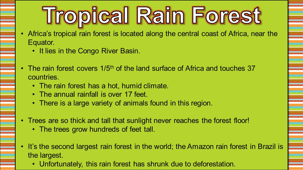 Africa's tropical rain forest is located along the central coast of Africa, near the Equator. It lies in the Congo River Basin. The rain forest covers
