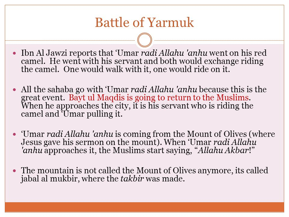 Battle of Yarmuk Ibn Al Jawzi reports that 'Umar radi Allahu anhu went on his red camel.