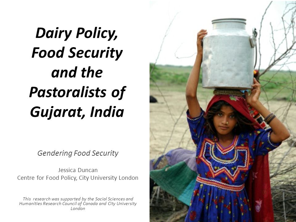 Dairy Policy, Food Security and the Pastoralists of Gujarat, India Gendering Food Security Jessica Duncan Centre for Food Policy, City University Lond
