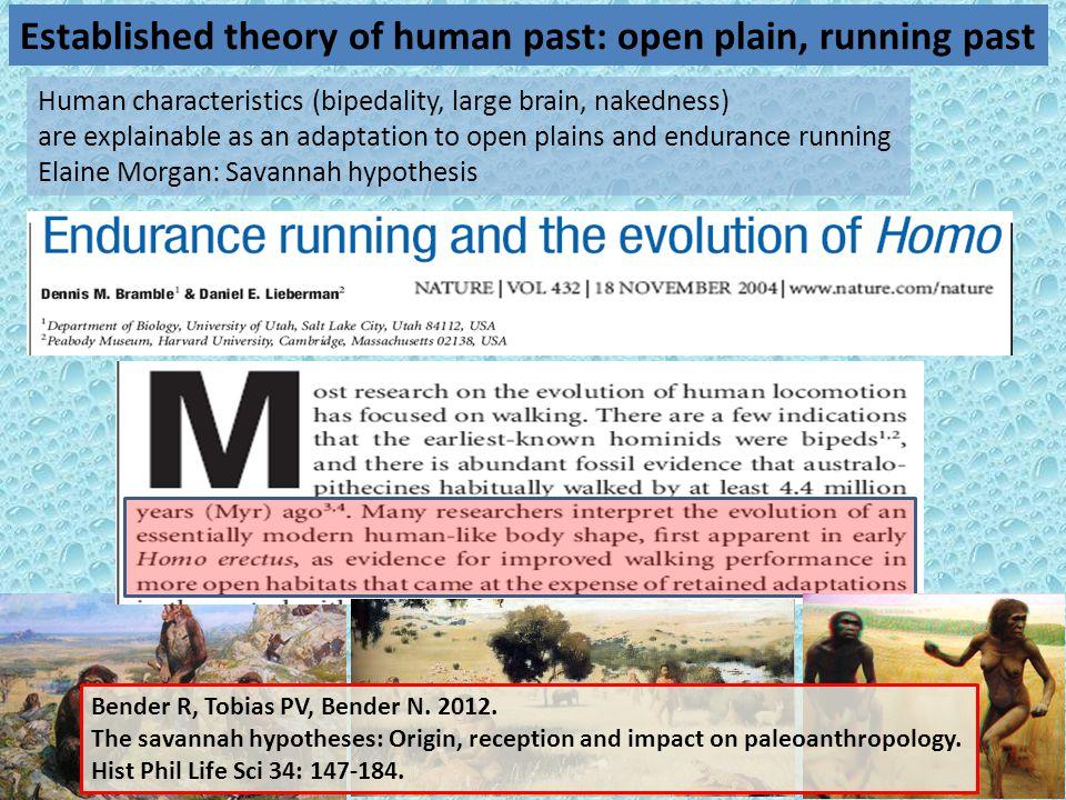 7 Human characteristics (bipedality, large brain, nakedness) are explainable as an adaptation to open plains and endurance running Elaine Morgan: Sava