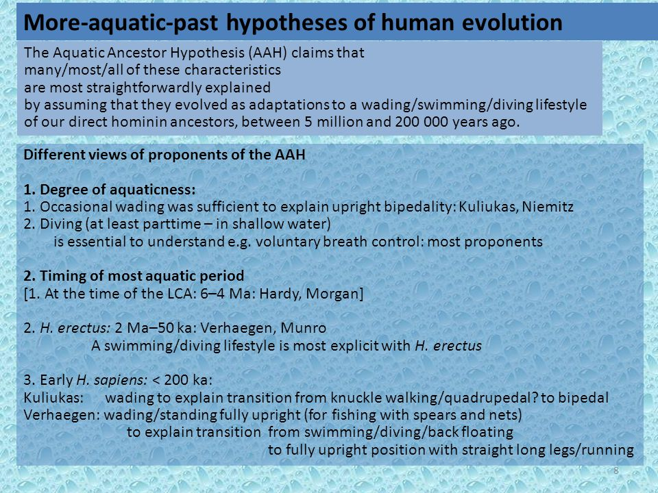 8 Different views of proponents of the AAH 1. Degree of aquaticness: 1.