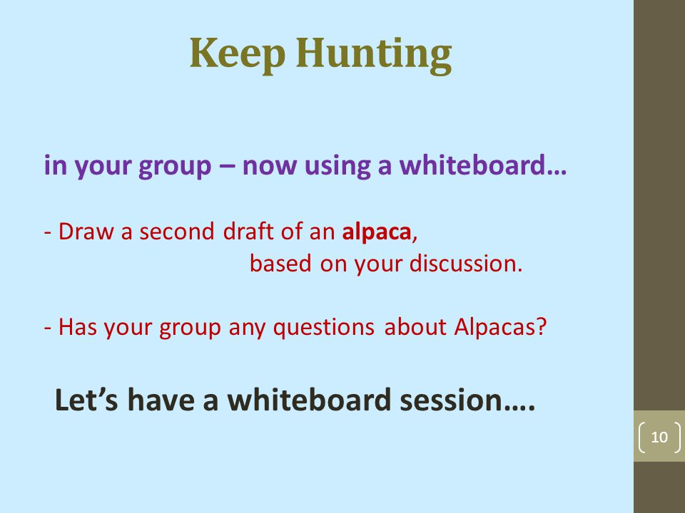 10 Keep Hunting in your group – now using a whiteboard… - Draw a second draft of an alpaca, based on your discussion.