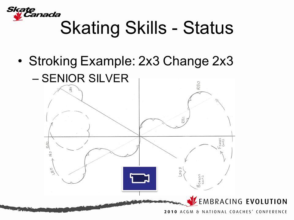 Stroking Example: 2x3 Change 2x3 –SENIOR SILVER