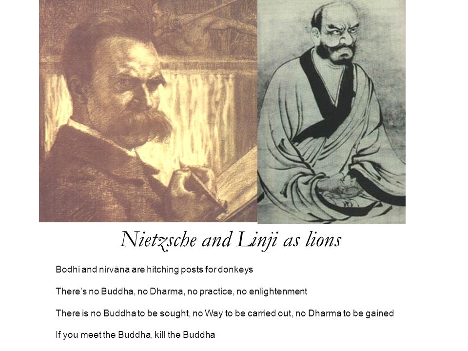 Nietzsche and Linji as lions Bodhi and nirvāna are hitching posts for donkeys There's no Buddha, no Dharma, no practice, no enlightenment There is no Buddha to be sought, no Way to be carried out, no Dharma to be gained If you meet the Buddha, kill the Buddha
