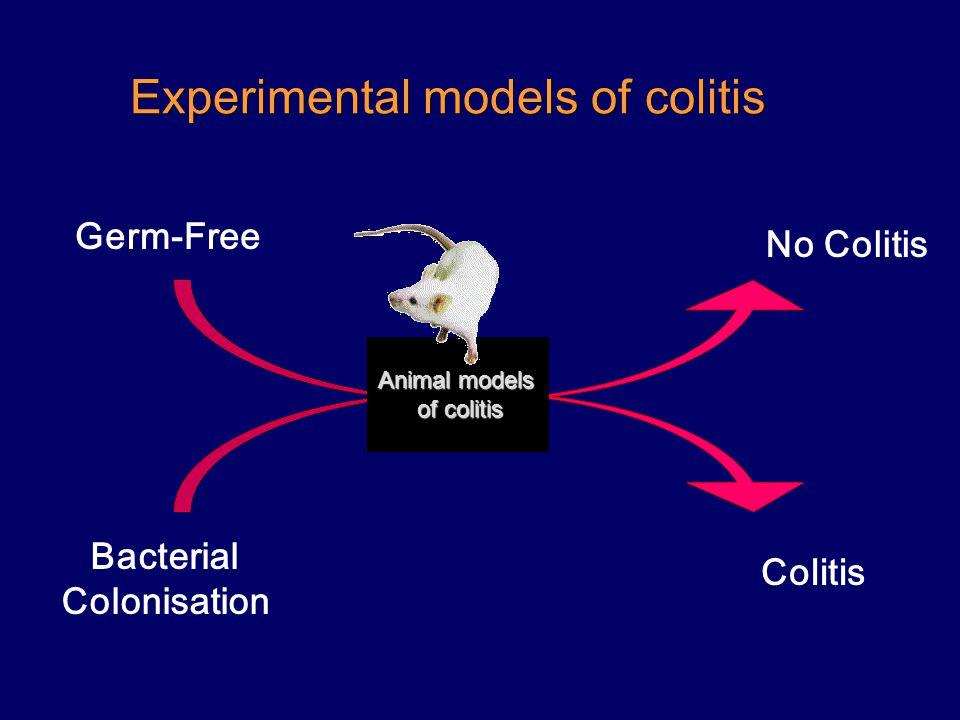 Experimental models of colitis Bacterial Colonisation Germ-Free Colitis No Colitis Animal models of colitis