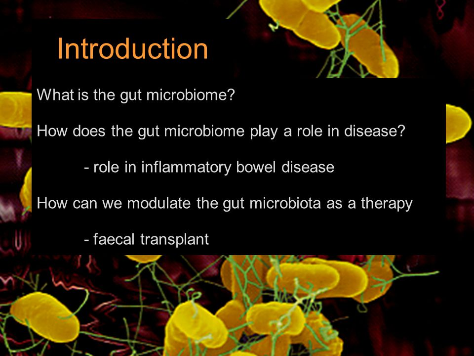 What is the gut microbiome? How does the gut microbiome play a role in disease? - role in inflammatory bowel disease How can we modulate the gut micro