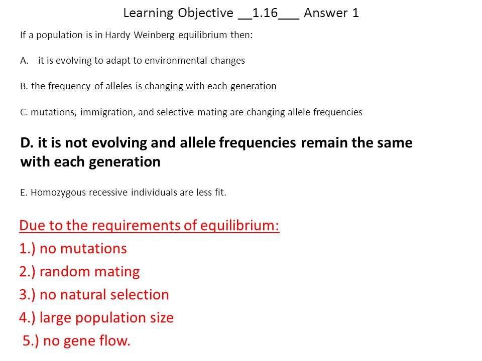 Learning Objective __1.16___ Answer 1 Due to the requirements of equilibrium: 1.) no mutations 2.) random mating 3.) no natural selection 4.) large po