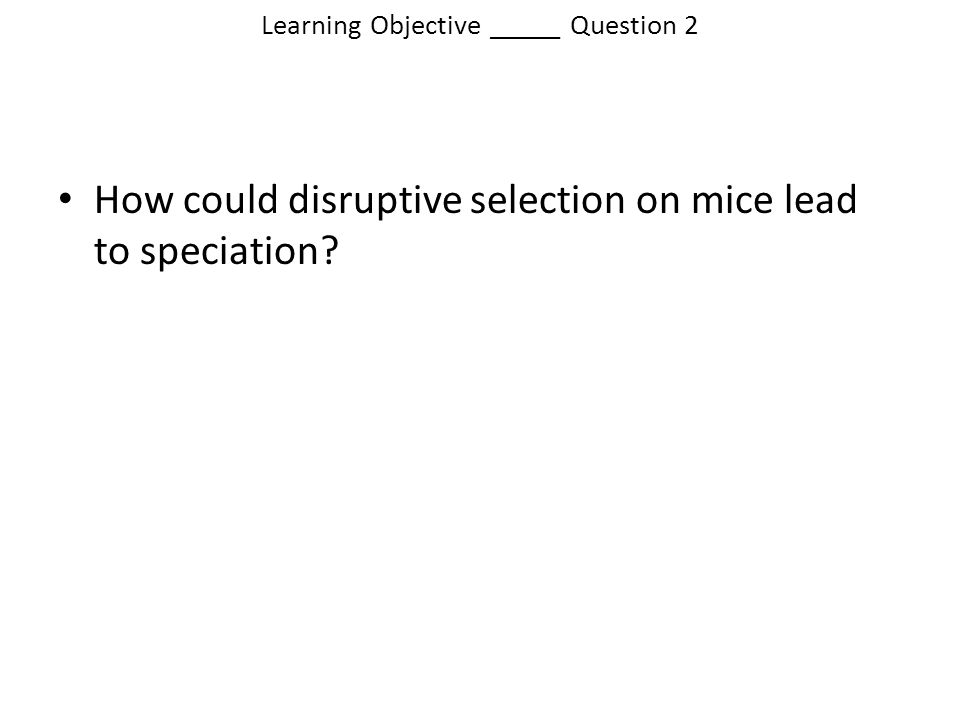 Learning Objective _____ Question 2 How could disruptive selection on mice lead to speciation?
