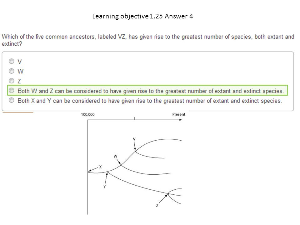 Learning objective 1.25 Answer 4