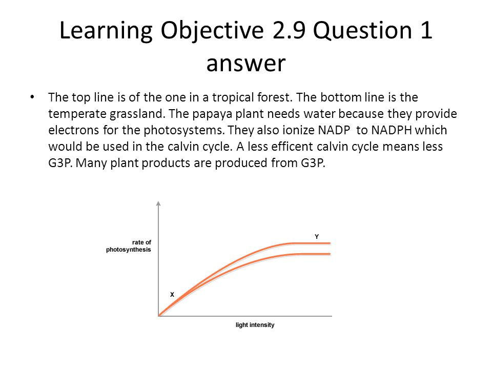 Learning Objective 2.9 Question 1 answer The top line is of the one in a tropical forest. The bottom line is the temperate grassland. The papaya plant