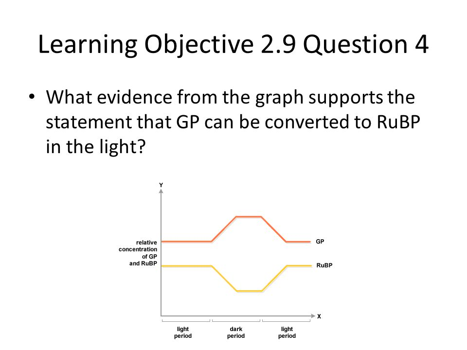 Learning Objective 2.9 Question 4 What evidence from the graph supports the statement that GP can be converted to RuBP in the light?