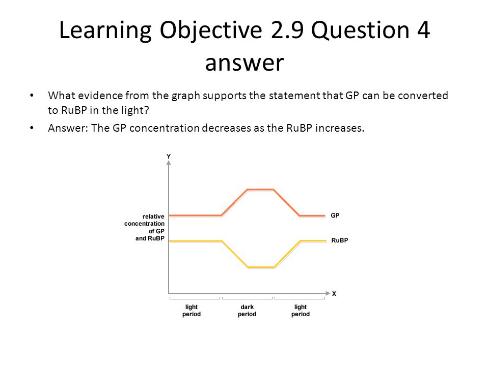 Learning Objective 2.9 Question 4 answer What evidence from the graph supports the statement that GP can be converted to RuBP in the light? Answer: Th