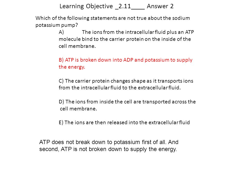 Learning Objective _2.11____ Answer 2 Which of the following statements are not true about the sodium potassium pump? A)The ions from the intracellula