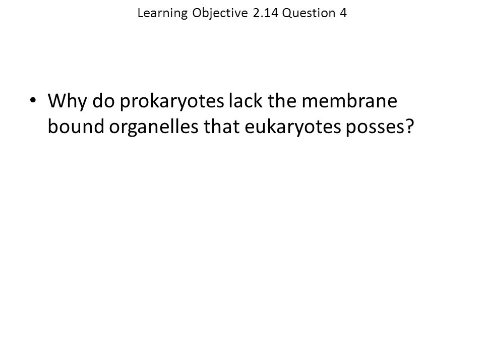Learning Objective 2.14 Question 4 Why do prokaryotes lack the membrane bound organelles that eukaryotes posses?