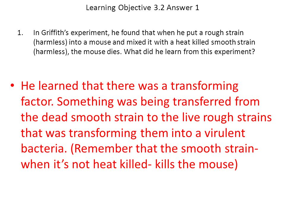 Learning Objective 3.2 Answer 1 He learned that there was a transforming factor. Something was being transferred from the dead smooth strain to the li