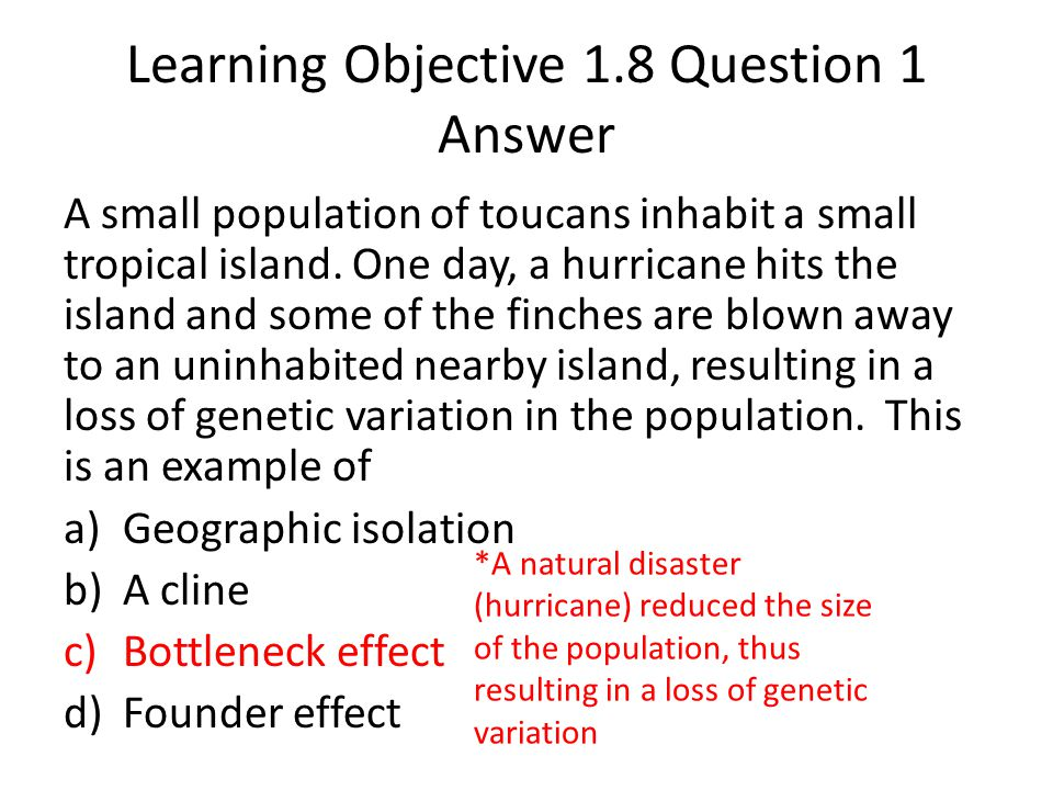 Learning Objective 1.8 Question 1 Answer A small population of toucans inhabit a small tropical island. One day, a hurricane hits the island and some