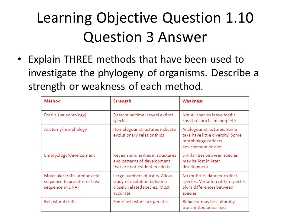 Learning Objective Question 1.10 Question 3 Answer Explain THREE methods that have been used to investigate the phylogeny of organisms. Describe a str