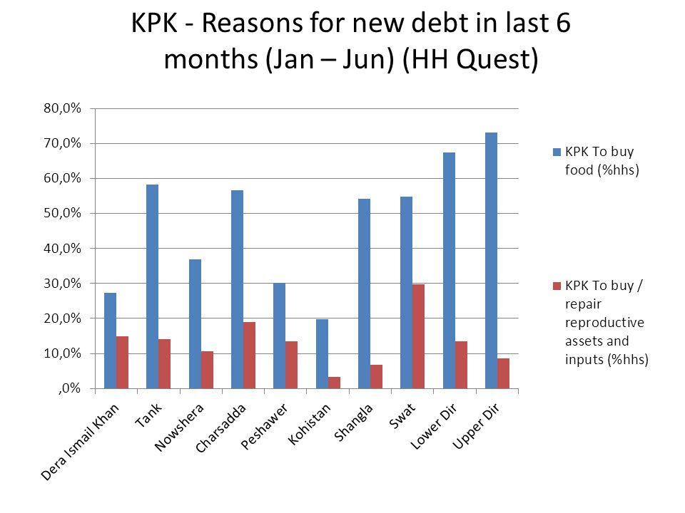 KPK - Reasons for new debt in last 6 months (Jan – Jun) (HH Quest)