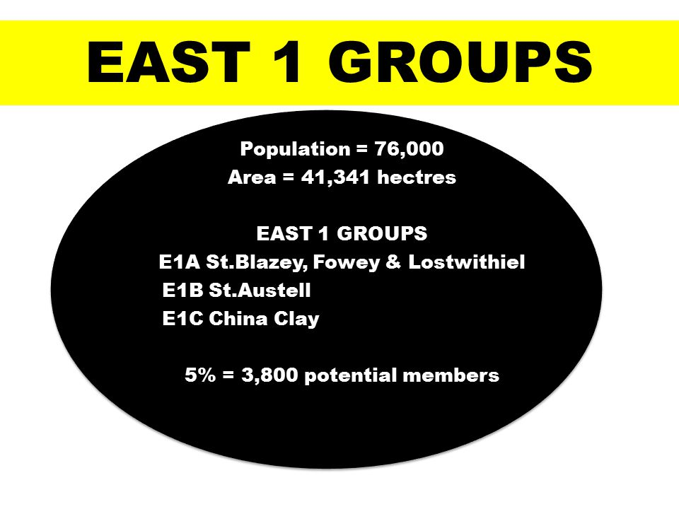 Population = 76,000 Area = 41,341 hectres EAST 1 GROUPS E1A St.Blazey, Fowey & Lostwithiel E1B St.Austell E1C China Clay 5% = 3,800 potential members EAST 1 GROUPS