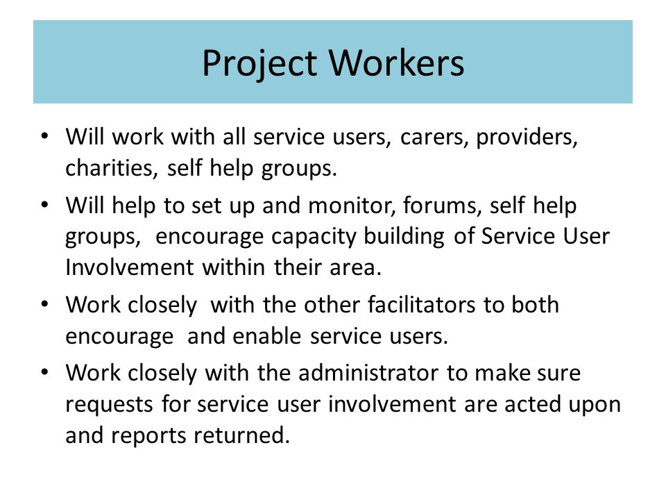 Project Workers Will work with all service users, carers, providers, charities, self help groups.
