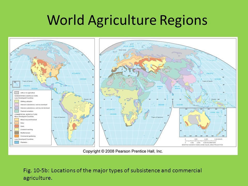 World Agriculture Regions Fig. 10-5b: Locations of the major types of subsistence and commercial agriculture.