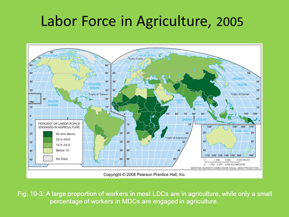 Labor Force in Agriculture, 2005 Fig. 10-3: A large proportion of workers in most LDCs are in agriculture, while only a small percentage of workers in