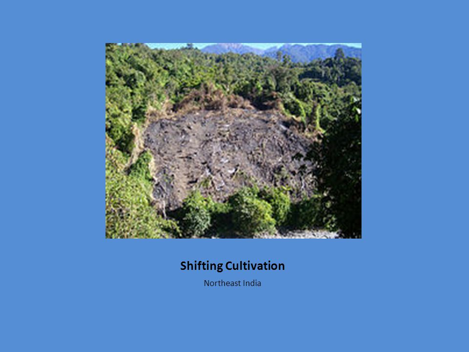 Shifting Cultivation Northeast India