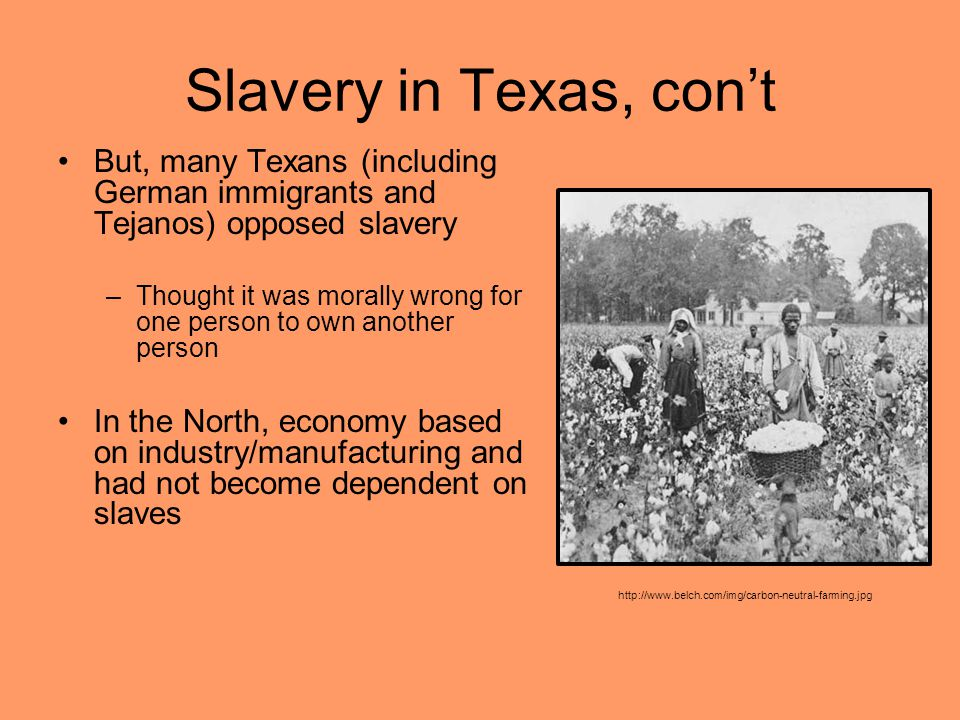 Slavery in Texas, con't But, many Texans (including German immigrants and Tejanos) opposed slavery –Thought it was morally wrong for one person to own another person In the North, economy based on industry/manufacturing and had not become dependent on slaves http://www.belch.com/img/carbon-neutral-farming.jpg