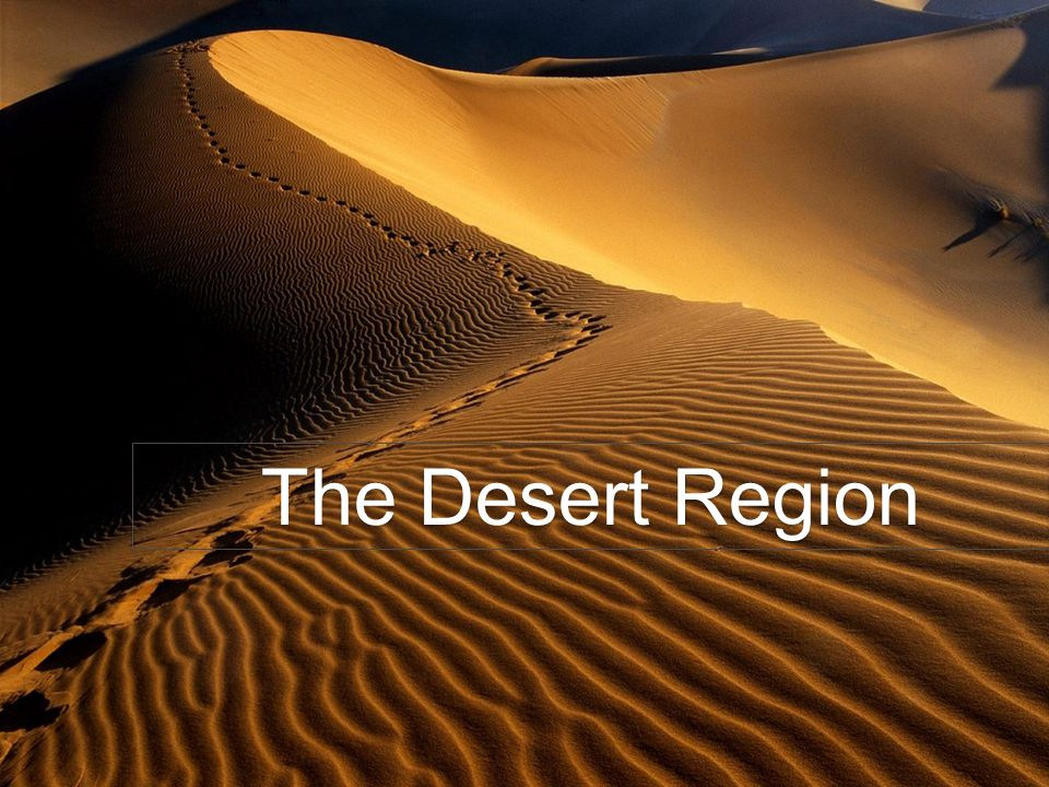 The Desert Region
