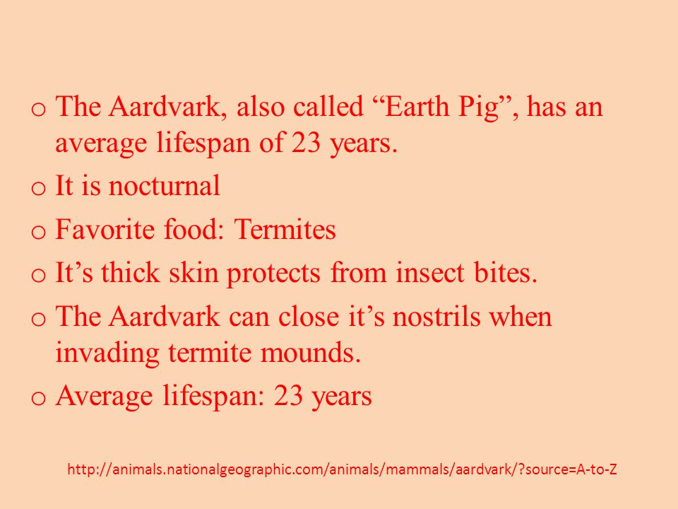 o The Aardvark, also called Earth Pig , has an average lifespan of 23 years.