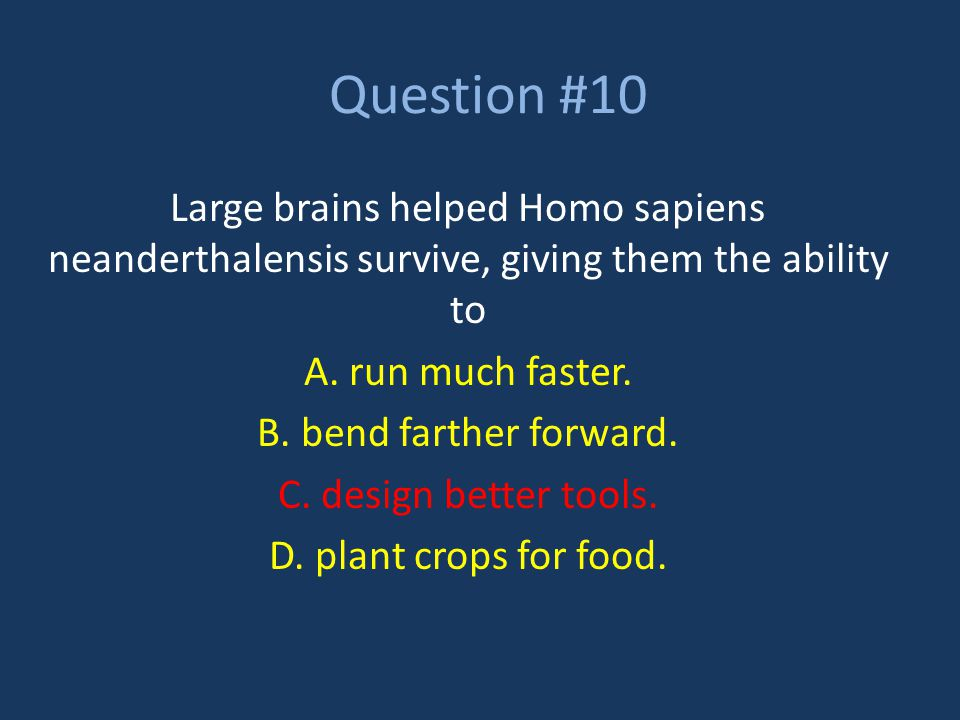 Question #10 Large brains helped Homo sapiens neanderthalensis survive, giving them the ability to A. run much faster. B. bend farther forward. C. des