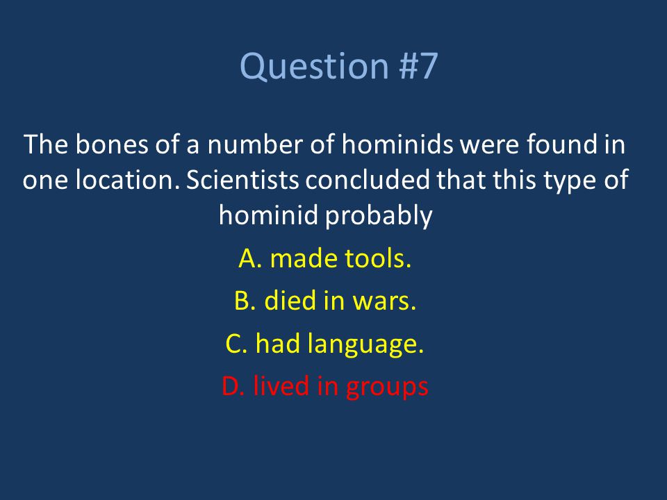 Question #7 The bones of a number of hominids were found in one location. Scientists concluded that this type of hominid probably A. made tools. B. di