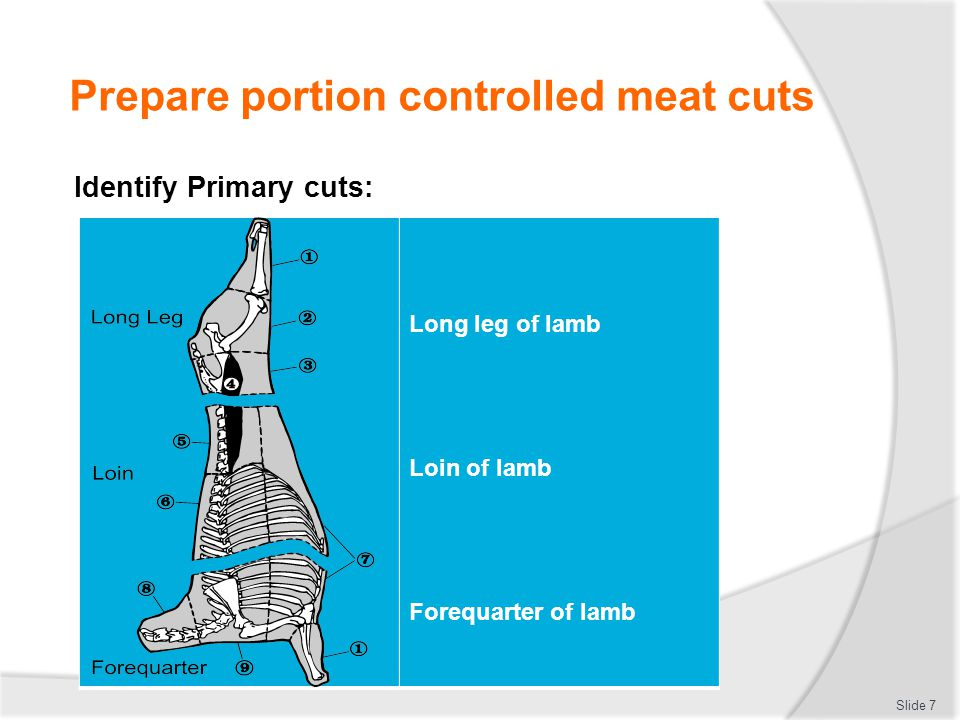 Prepare portion controlled meat cuts Identify Secondary cuts: Slide 8 Hindquarter of beef 1 Shin 2 Topside (silverside and girello behind) 3 Round (knuckle) 4 Rump 5 Tenderloin (fillet) 6 Sirloin/strip loin Forequarter of beef 7 Rib eye