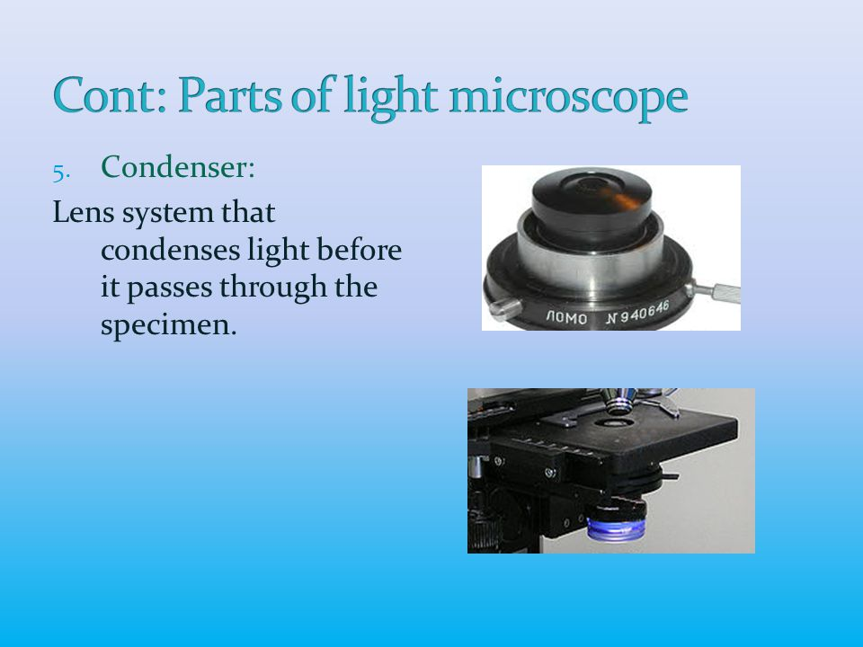 5. Condenser: Lens system that condenses light before it passes through the specimen.