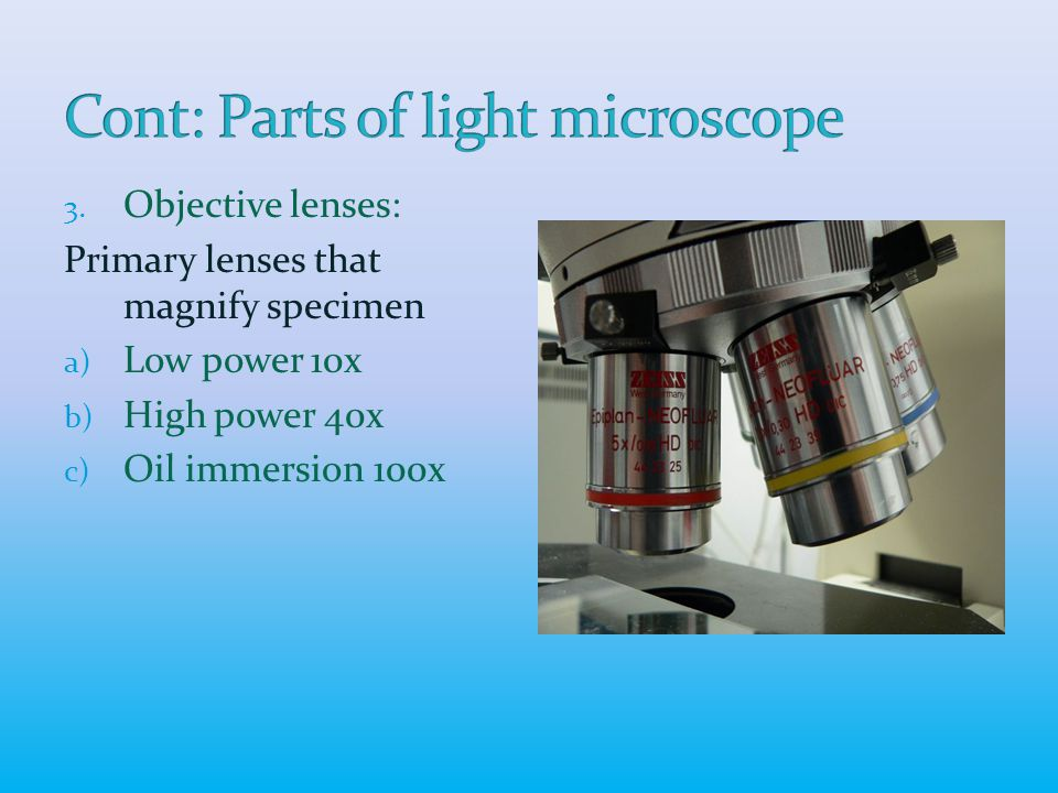 3. Objective lenses: Primary lenses that magnify specimen a) Low power 10x b) High power 40x c) Oil immersion 100x