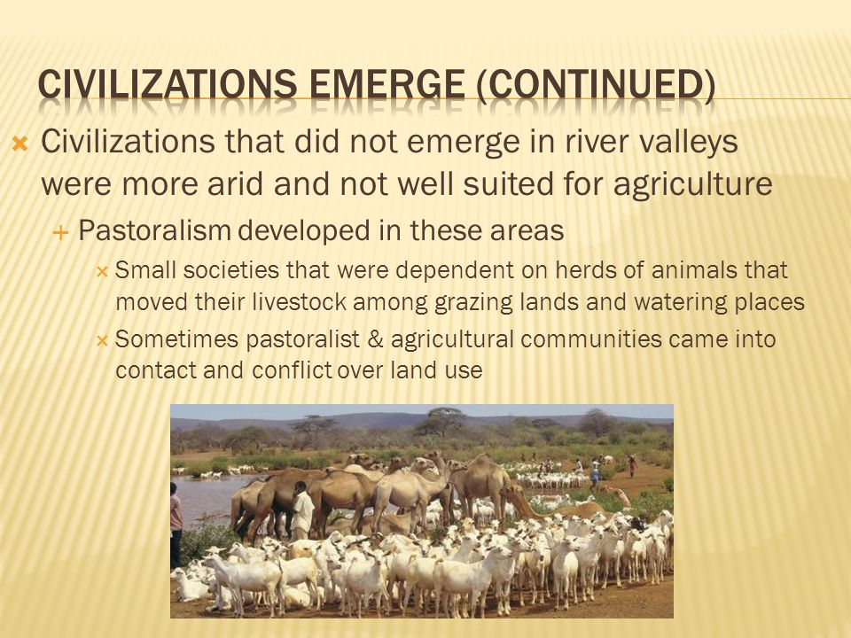  Civilizations that did not emerge in river valleys were more arid and not well suited for agriculture  Pastoralism developed in these areas  Small societies that were dependent on herds of animals that moved their livestock among grazing lands and watering places  Sometimes pastoralist & agricultural communities came into contact and conflict over land use
