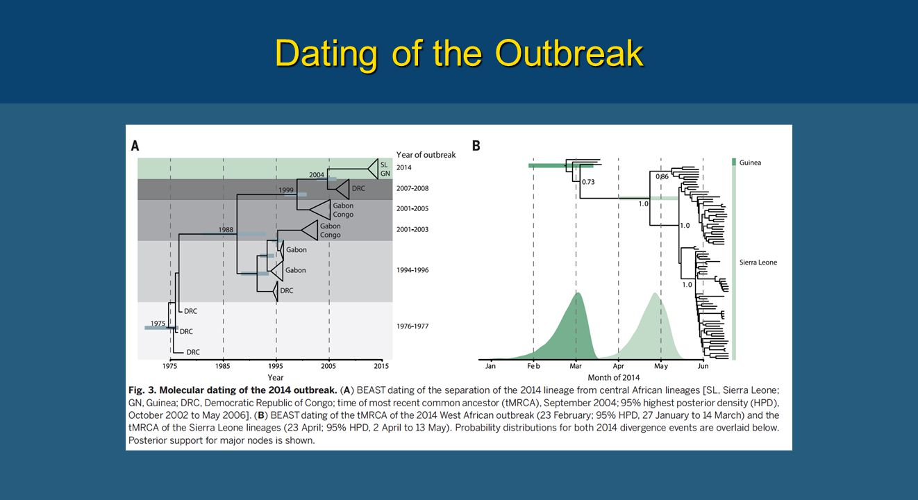 Dating of the Outbreak