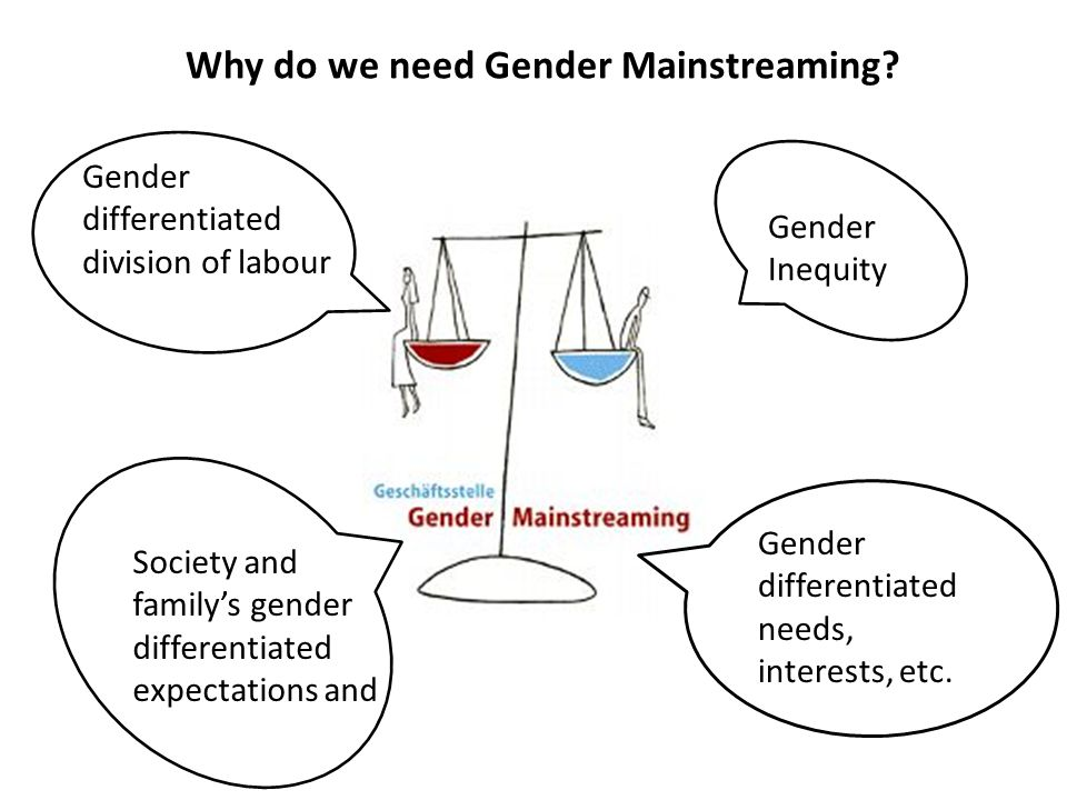 Why do we need Gender Mainstreaming? Gender Inequity Gender differentiated needs, interests, etc. Gender differentiated division of labour Society and